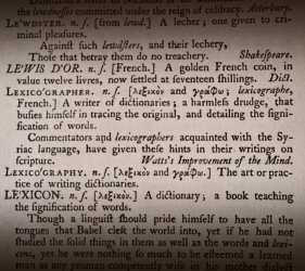 Definition of lexicographer